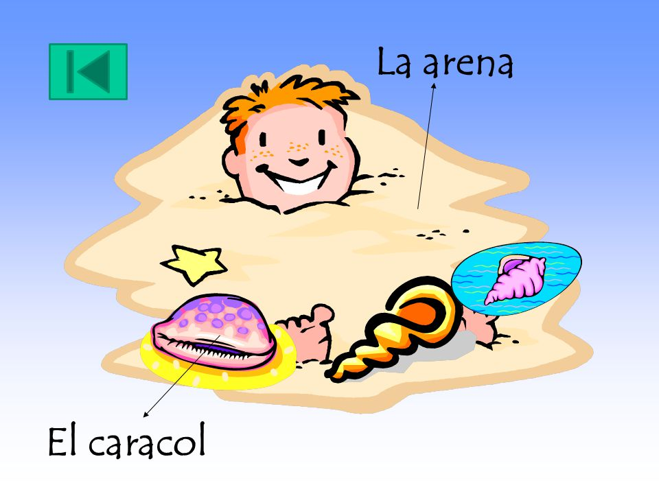 La arena El caracol