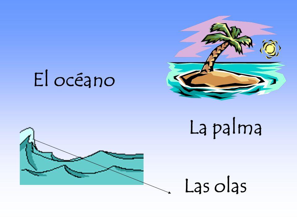 La palma El océano Las olas