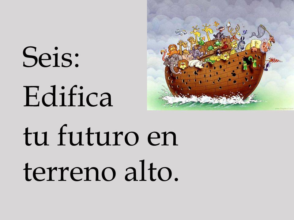 Seis: Edifica tu futuro en terreno alto.