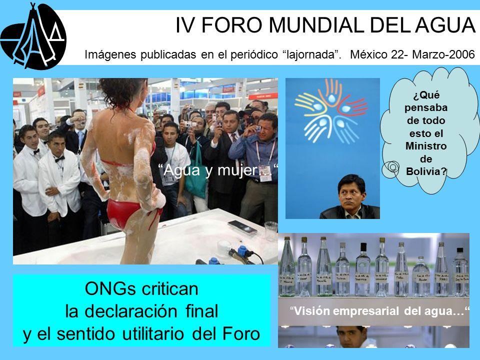 ONGs critican la declaración final y el sentido utilitario del Foro ¿Qué pensaba de todo esto el Ministro de Bolivia.