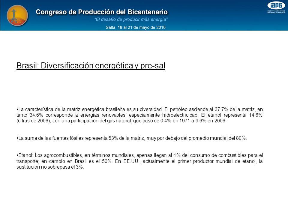 La característica de la matriz energética brasileña es su diversidad.