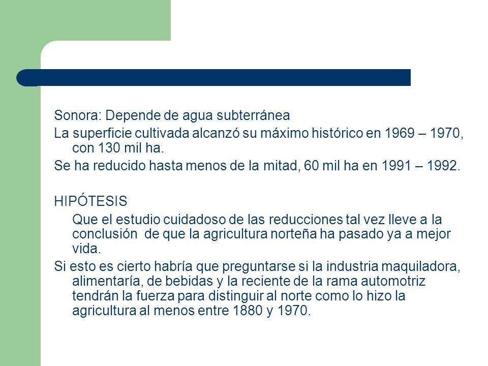 1970 - 2000 1970  se consolidó la diversificación de cultivos.