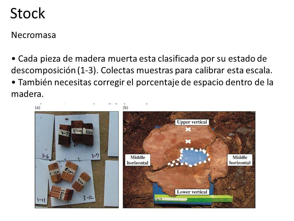 Necromasa Cada pieza de madera muerta esta clasificada por su estado de descomposición (1-3).