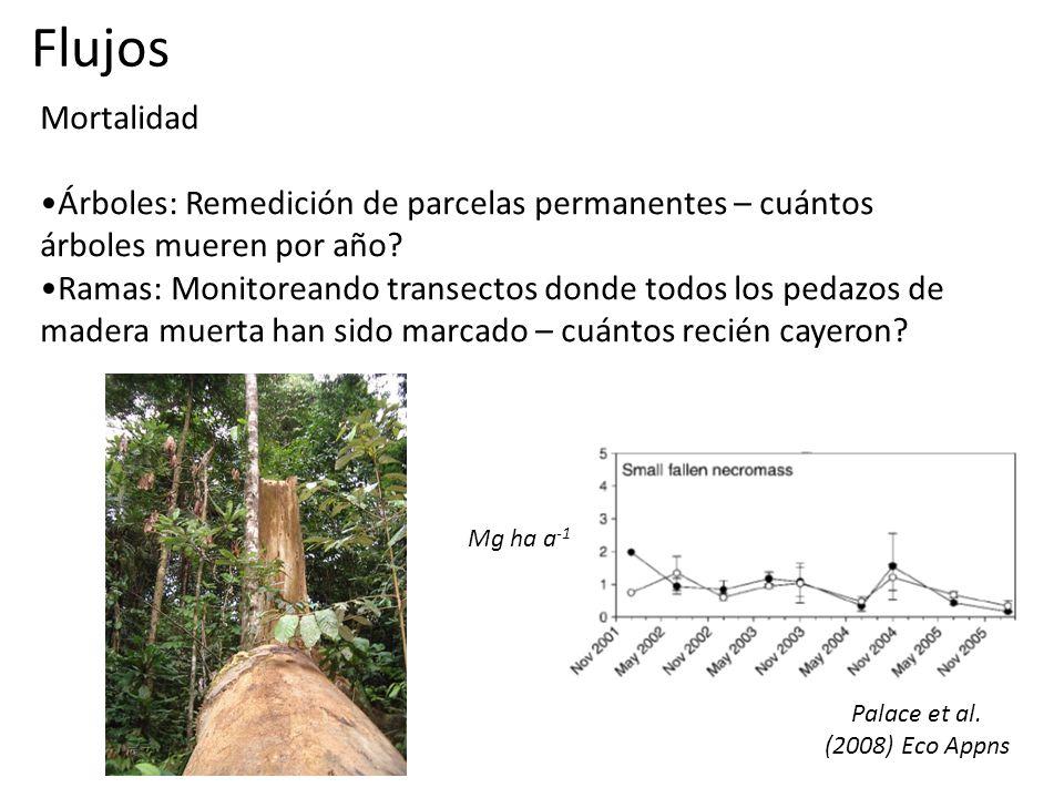 Mortalidad Árboles: Remedición de parcelas permanentes – cuántos árboles mueren por año.
