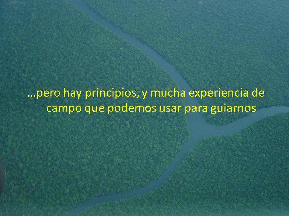 …pero hay principios, y mucha experiencia de campo que podemos usar para guiarnos