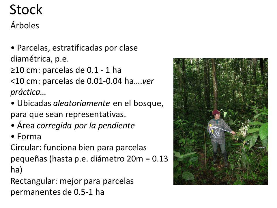 Stock Árboles Parcelas, estratificadas por clase diamétrica, p.e.
