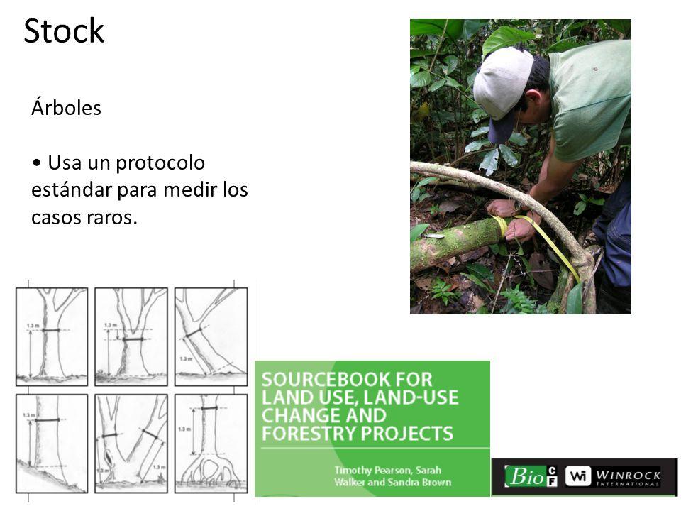 Árboles Usa un protocolo estándar para medir los casos raros. Stock