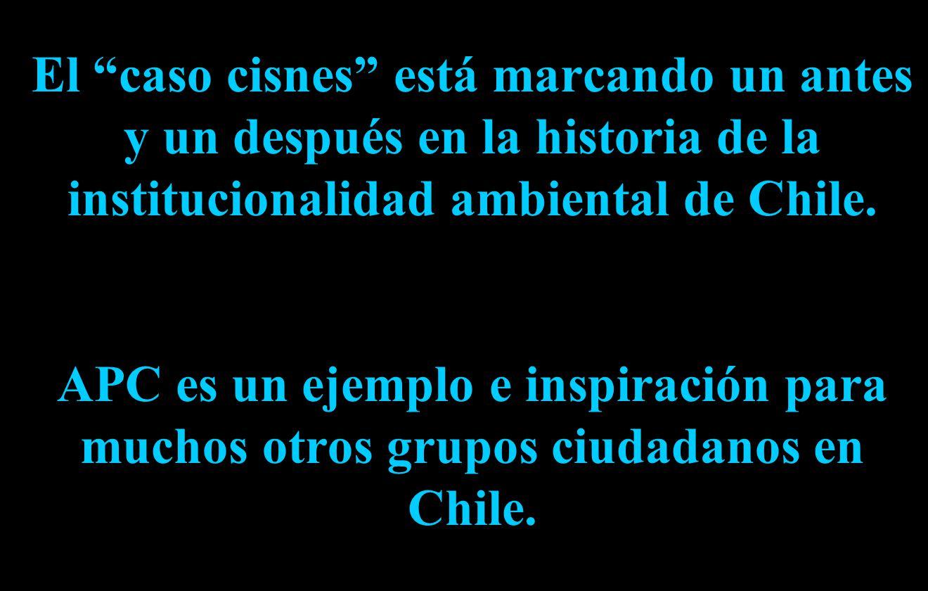 El caso cisnes está marcando un antes y un después en la historia de la institucionalidad ambiental de Chile.