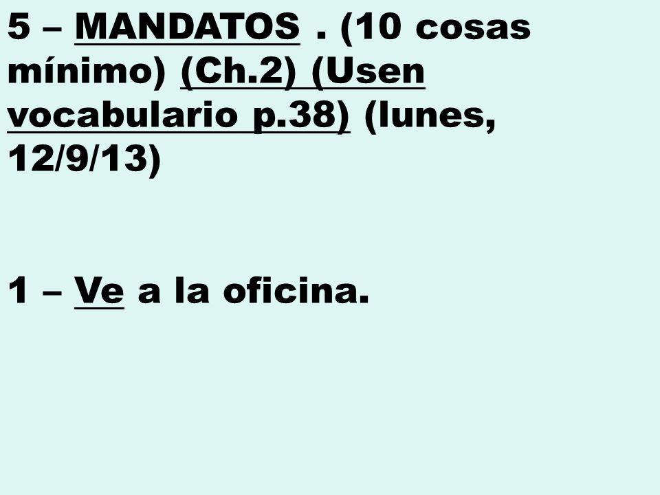 5 – MANDATOS.