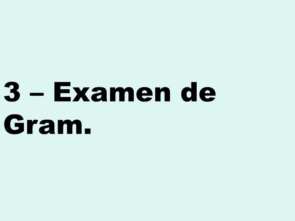 3 – Examen de Gram.