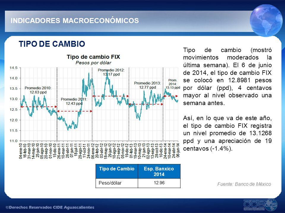 TIPO DE CAMBIO INDICADORES MACROECONÓMICOS Tipo de cambio (mostró movimientos moderados la última semana).