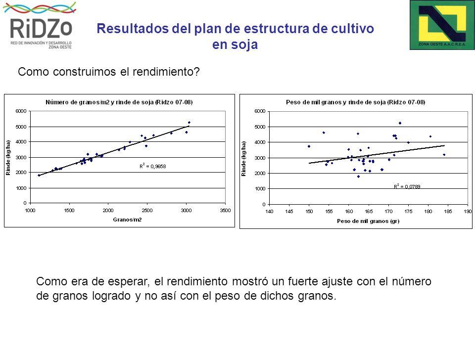 Resultados del plan de estructura de cultivo en soja Como era de esperar, el rendimiento mostró un fuerte ajuste con el número de granos logrado y no así con el peso de dichos granos.