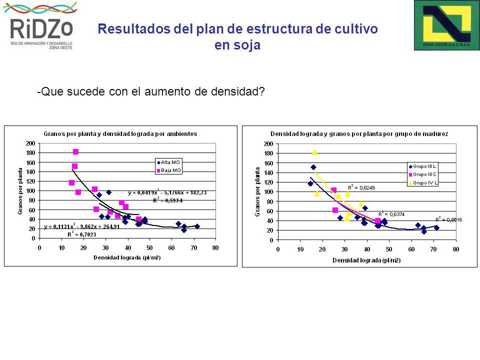 -Que sucede con el aumento de densidad Resultados del plan de estructura de cultivo en soja