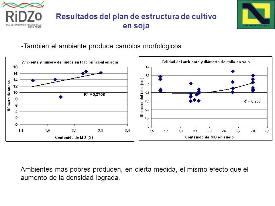 Ambientes mas pobres producen, en cierta medida, el mismo efecto que el aumento de la densidad lograda.