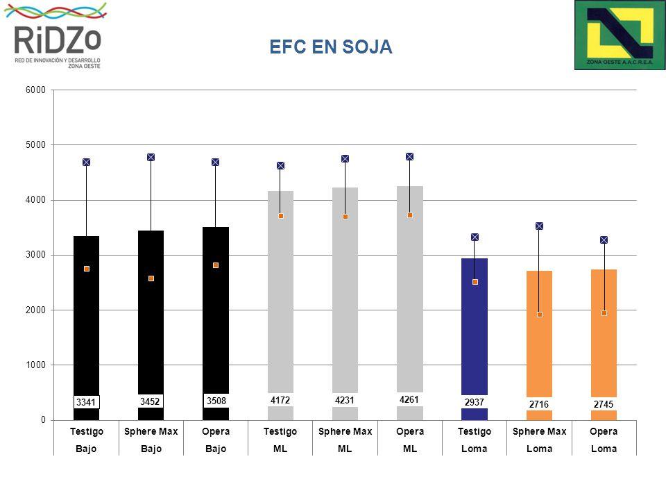 EFC EN SOJA