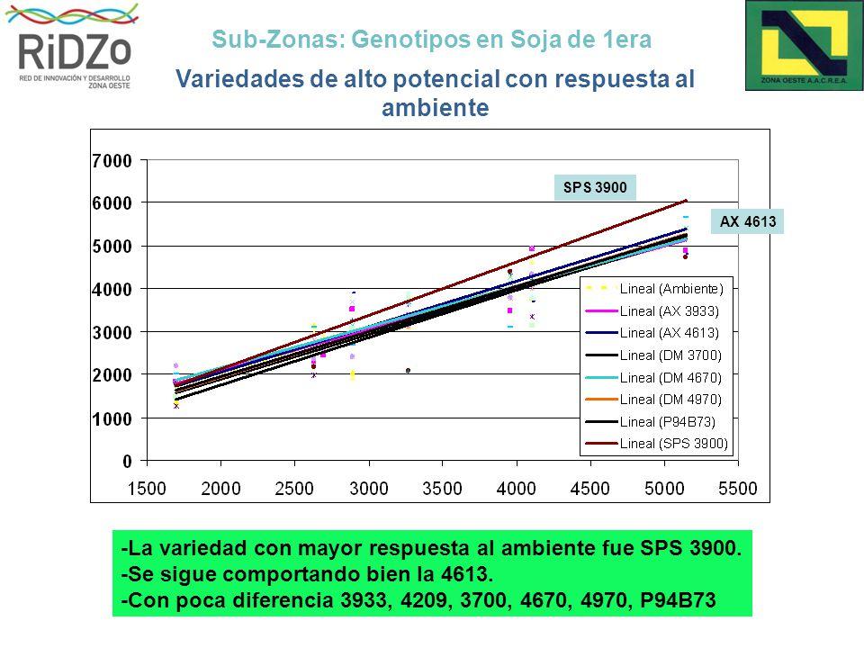 Sub-Zonas: Genotipos en Soja de 1era Variedades de alto potencial con respuesta al ambiente SPS 3900 AX 4613 -La variedad con mayor respuesta al ambiente fue SPS 3900.