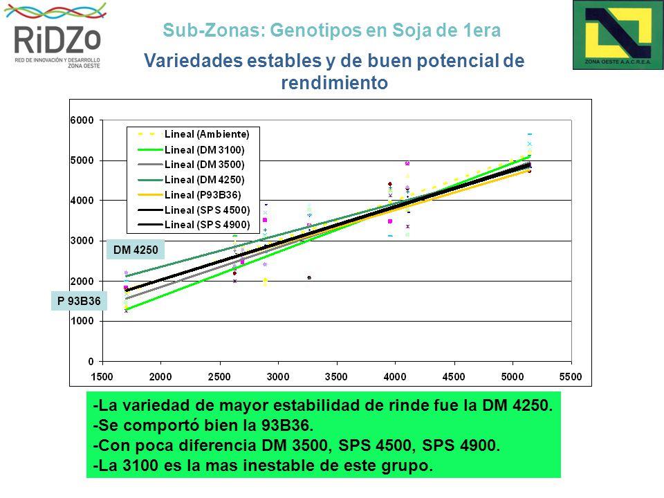Sub-Zonas: Genotipos en Soja de 1era Variedades estables y de buen potencial de rendimiento DM 4250 P 93B36 -La variedad de mayor estabilidad de rinde fue la DM 4250.
