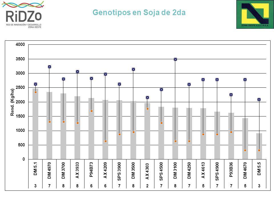 Genotipos en Soja de 2da