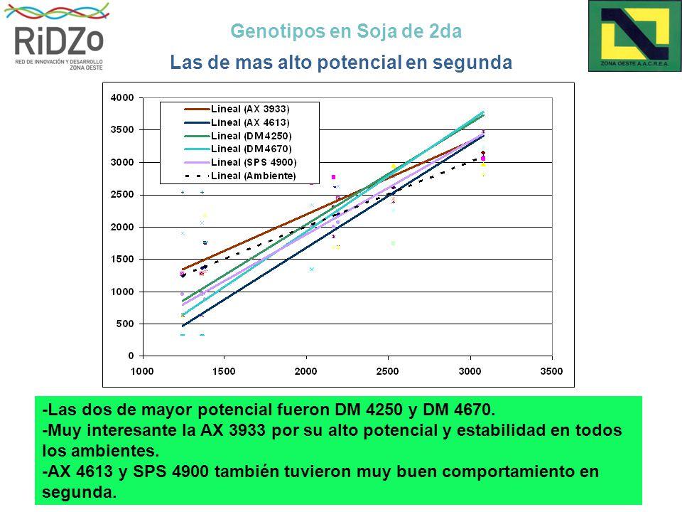 Genotipos en Soja de 2da Las de mas alto potencial en segunda -Las dos de mayor potencial fueron DM 4250 y DM 4670.