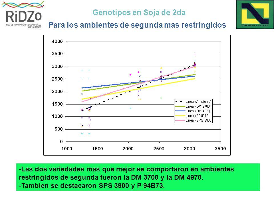 Genotipos en Soja de 2da Para los ambientes de segunda mas restringidos -Las dos variedades mas que mejor se comportaron en ambientes restringidos de segunda fueron la DM 3700 y la DM 4970.