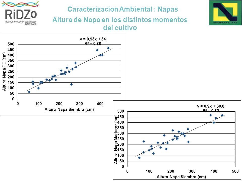 Caracterizacion Ambiental : Napas Altura de Napa en los distintos momentos del cultivo