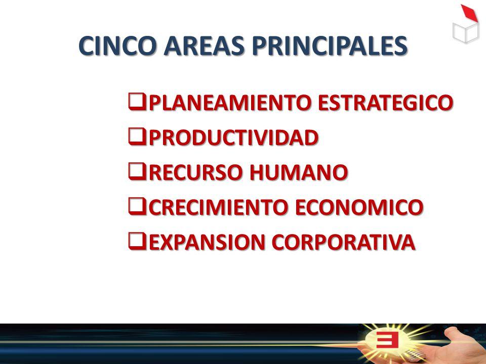 CINCO AREAS PRINCIPALES  PLANEAMIENTO ESTRATEGICO  PRODUCTIVIDAD  RECURSO HUMANO  CRECIMIENTO ECONOMICO  EXPANSION CORPORATIVA