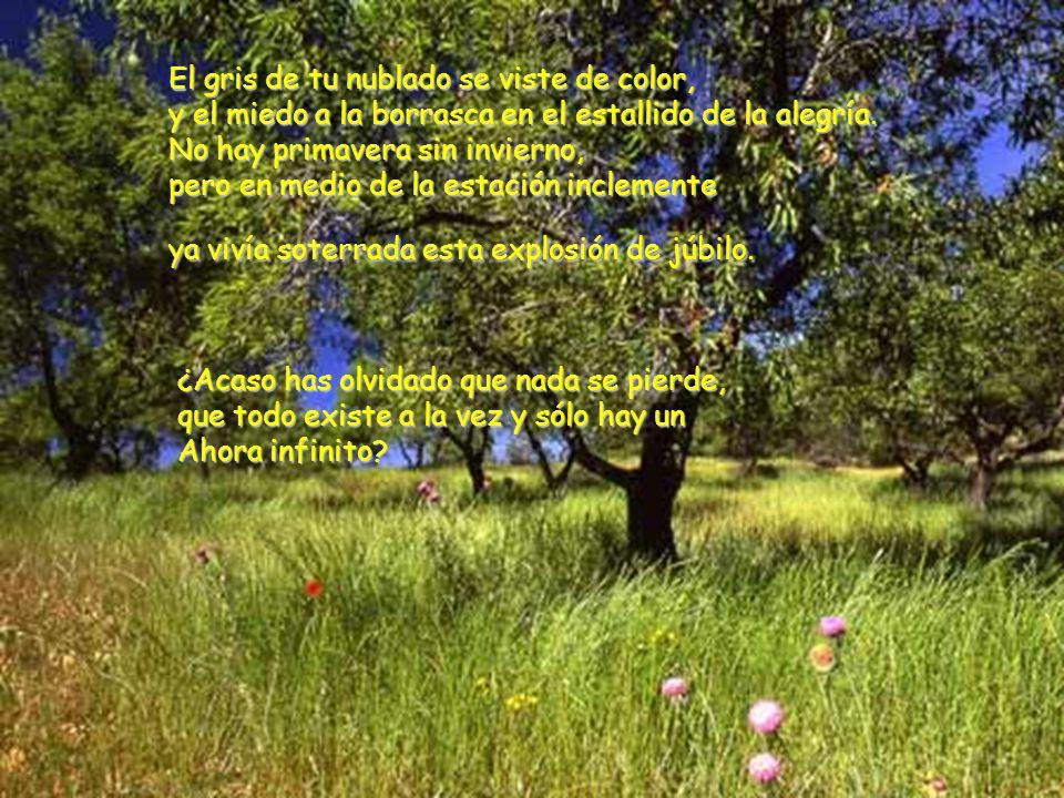 Presentaciones Rosy La Plata - Argentina Cuando llega la primavera, la tierra parece gritar con toda su alma: No llores más, porque tus lágrimas cayeron en mí dando mucho fruto.