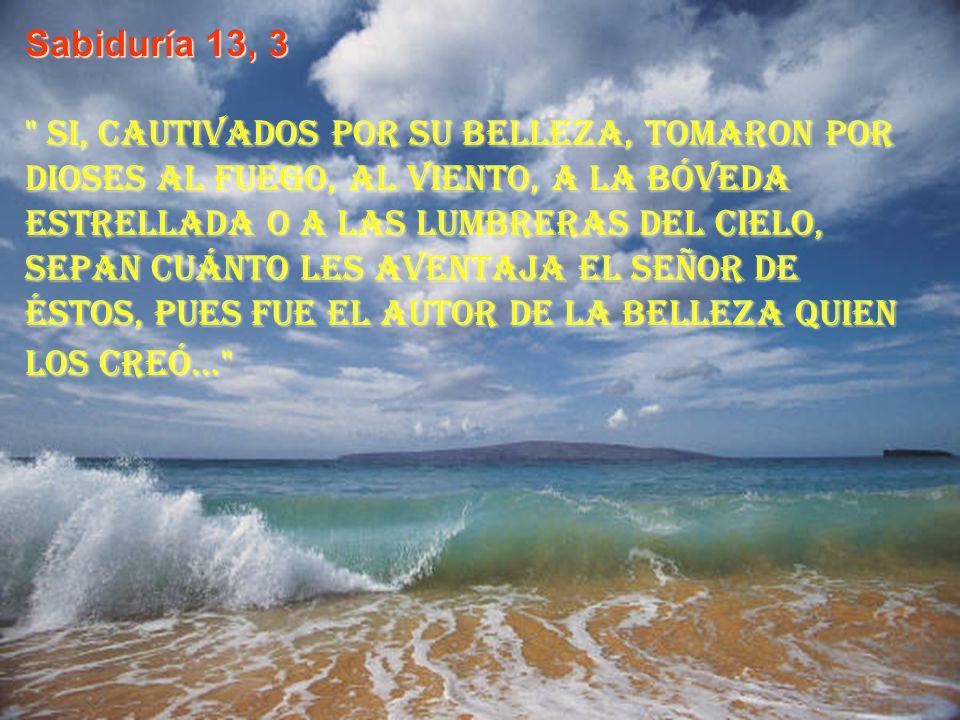 Sabiduría13, 1 Los hombres en quienes había ignorancia de Dios no fueron capaces de conocer por las cosas buenas a Aquel que es, ni, atendiendo a las obras, reconocieron al Artífice.