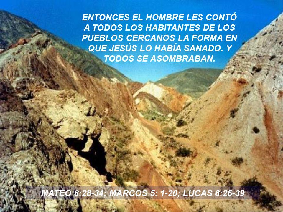 LA GENTE SE VOLVIÓ TEMEROSA DEL PODER DE JESÚS, LE PIDIERON QUE REGRESARA AL LUGAR DE DONDE HABÍA VENIDO.