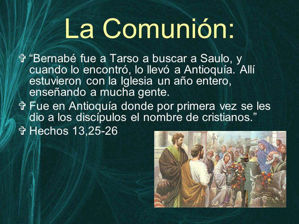 La Comunión:  Bernabé fue a Tarso a buscar a Saulo, y cuando lo encontró, lo llevó a Antioquía.