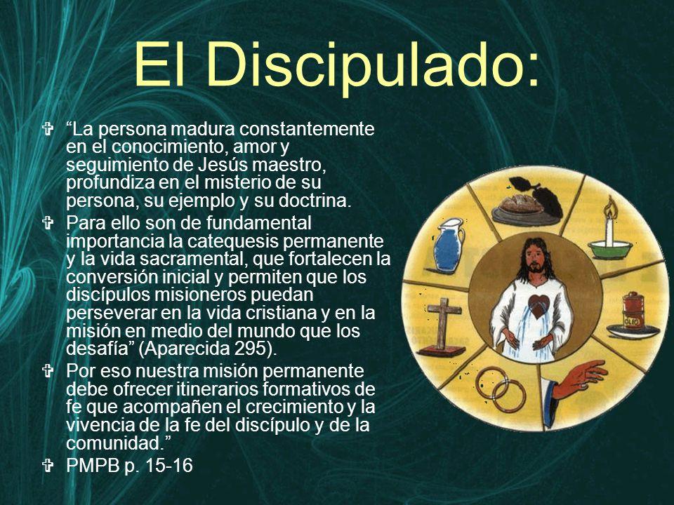 El Discipulado:  La persona madura constantemente en el conocimiento, amor y seguimiento de Jesús maestro, profundiza en el misterio de su persona, su ejemplo y su doctrina.