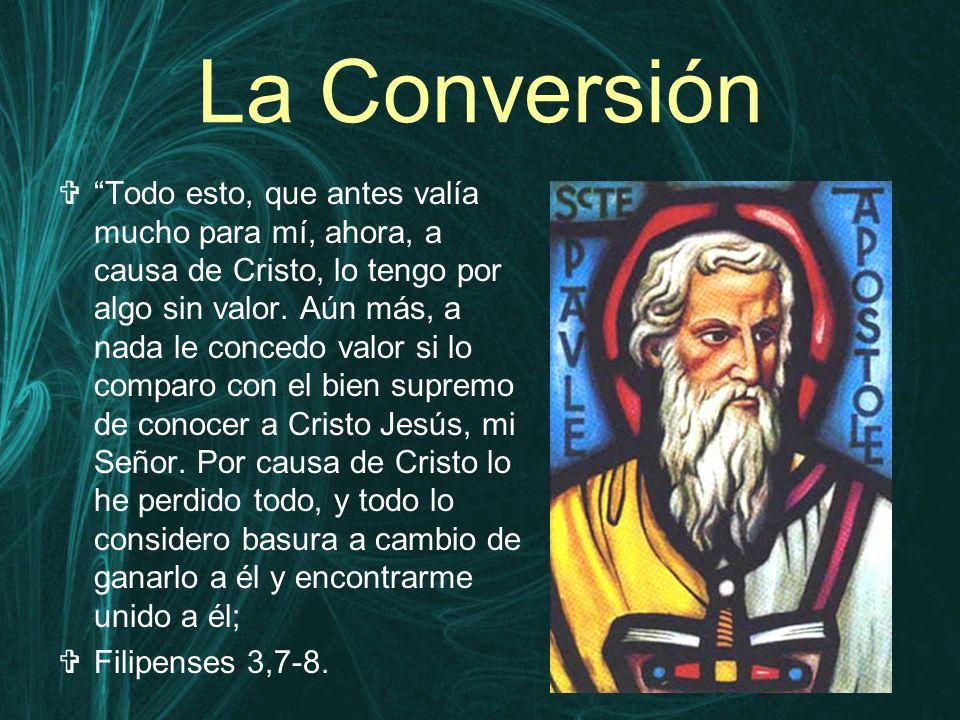 La Conversión  Todo esto, que antes valía mucho para mí, ahora, a causa de Cristo, lo tengo por algo sin valor.
