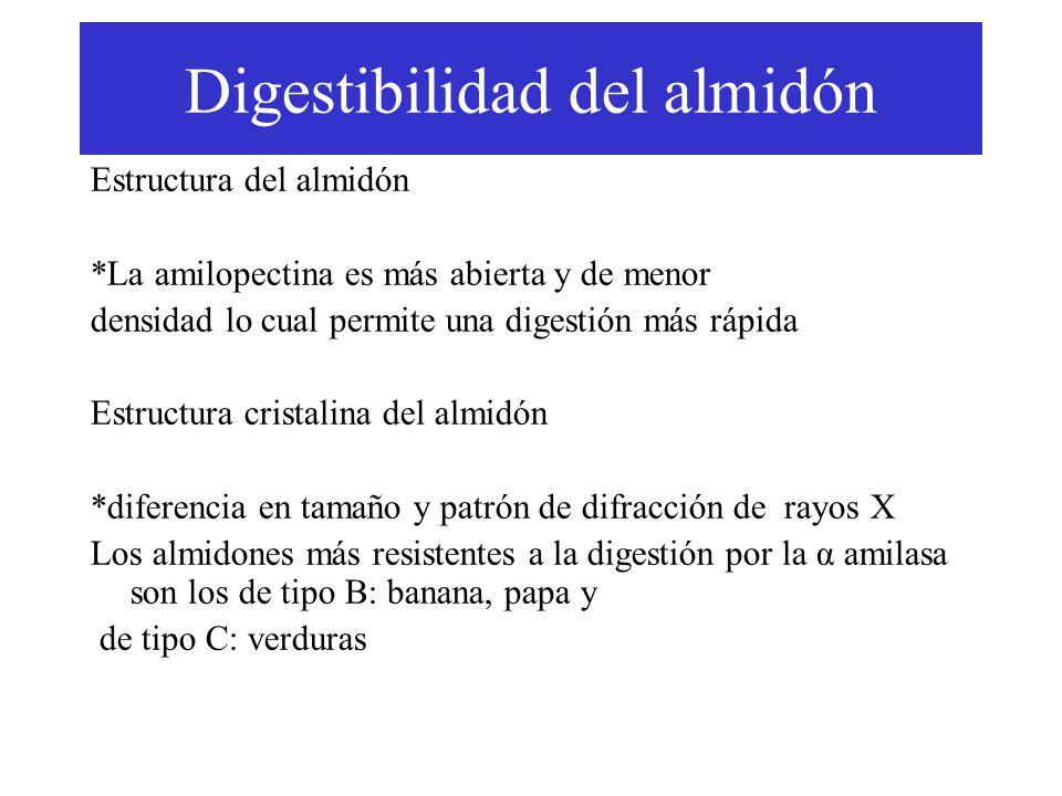 Digestibilidad del almidón Estructura del almidón *La amilopectina es más abierta y de menor densidad lo cual permite una digestión más rápida Estructura cristalina del almidón *diferencia en tamaño y patrón de difracción de rayos X Los almidones más resistentes a la digestión por la α amilasa son los de tipo B: banana, papa y de tipo C: verduras