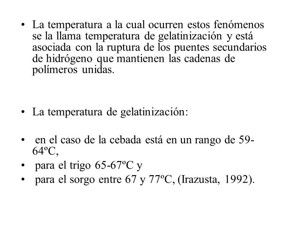 La temperatura a la cual ocurren estos fenómenos se la llama temperatura de gelatinización y está asociada con la ruptura de los puentes secundarios de hidrógeno que mantienen las cadenas de polímeros unidas.