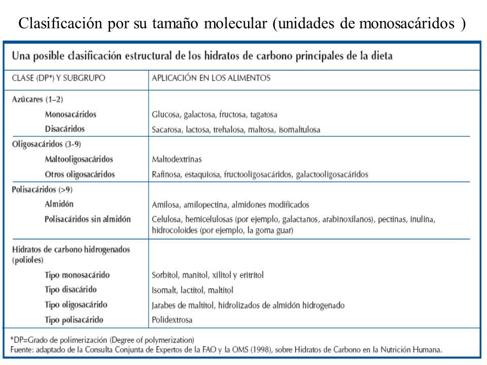 Nutrición Aplicada 2008. C. Cabrera.