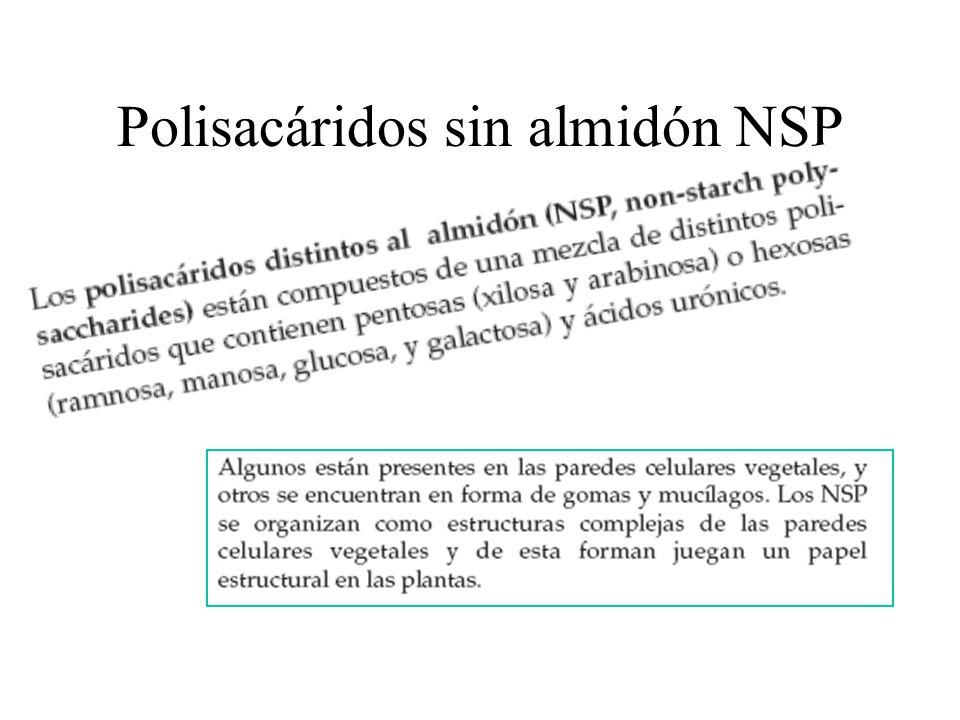 Polisacáridos sin almidón NSP