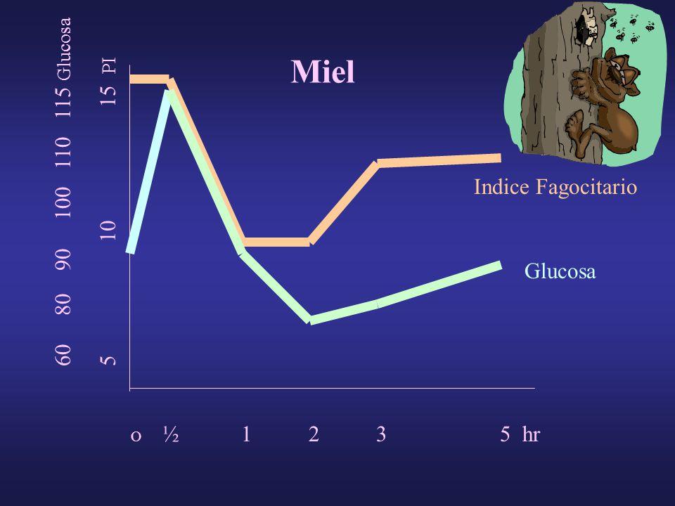 O ½ 1 2 3 5 hr 5 10 15 PI 60 80 90 100 110 115 Glucosa Indice Fagocitario Glucosa Miel