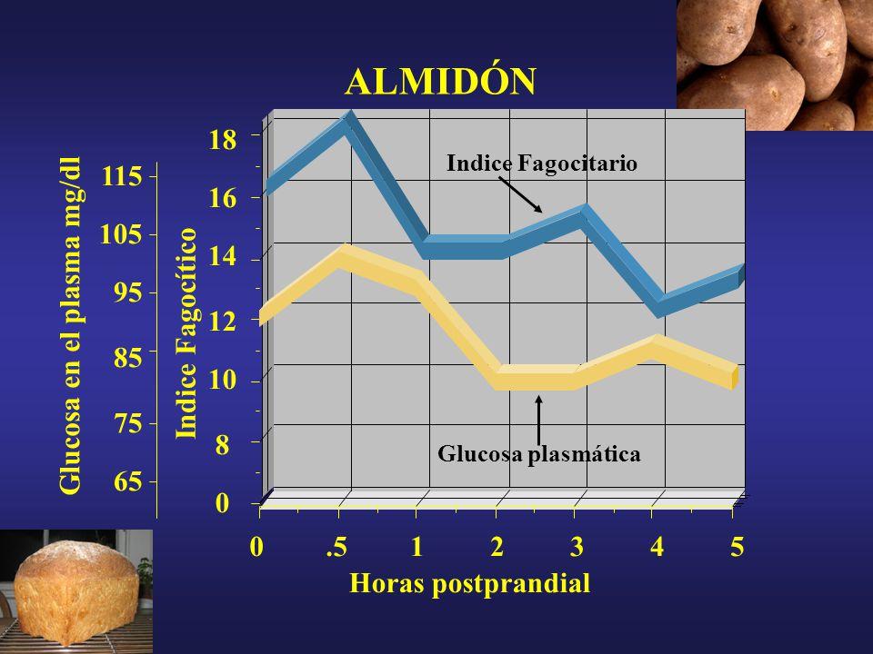 16 0 8 10 12 14 105 95 85 75 65 115 ALMIDÓN Glucosa en el plasma mg/dl Indice Fagocítico.513452 Horas postprandial Indice Fagocitario Glucosa plasmática 0 18