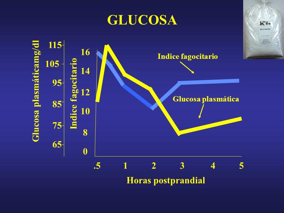 16 0 8 10 12 14 105 95 85 75 65 115 GLUCOSA Glucosa plasmáticamg/dl Indice fagocitario.513452 Horas postprandial Indice fagocitario Glucosa plasmática