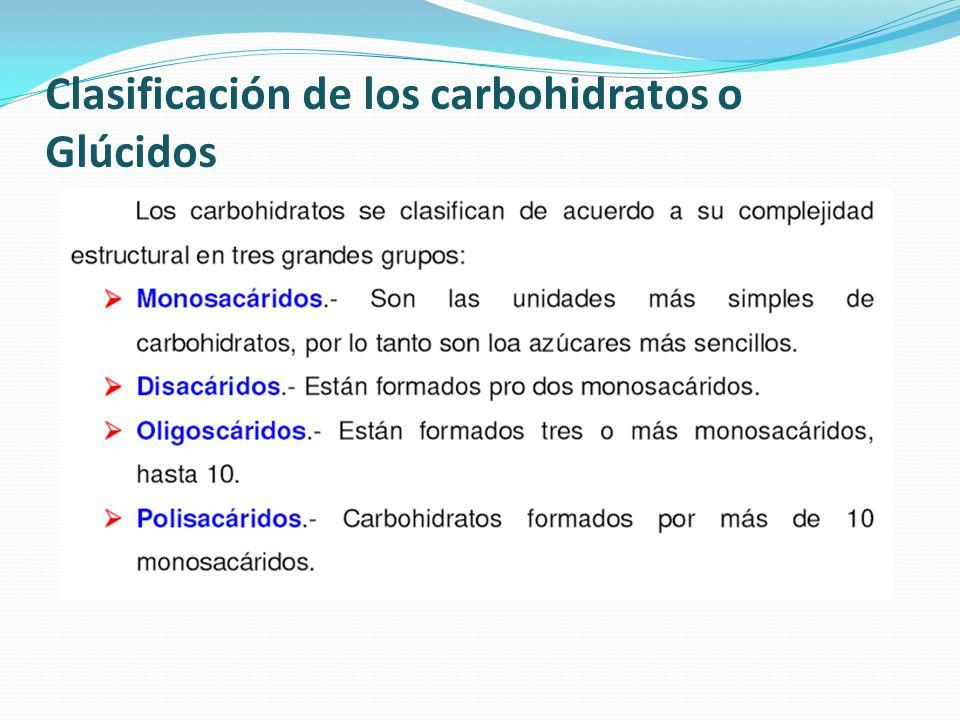 Clasificación de los carbohidratos o Glúcidos