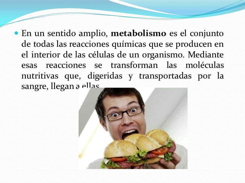 En un sentido amplio, metabolismo es el conjunto de todas las reacciones químicas que se producen en el interior de las células de un organismo.