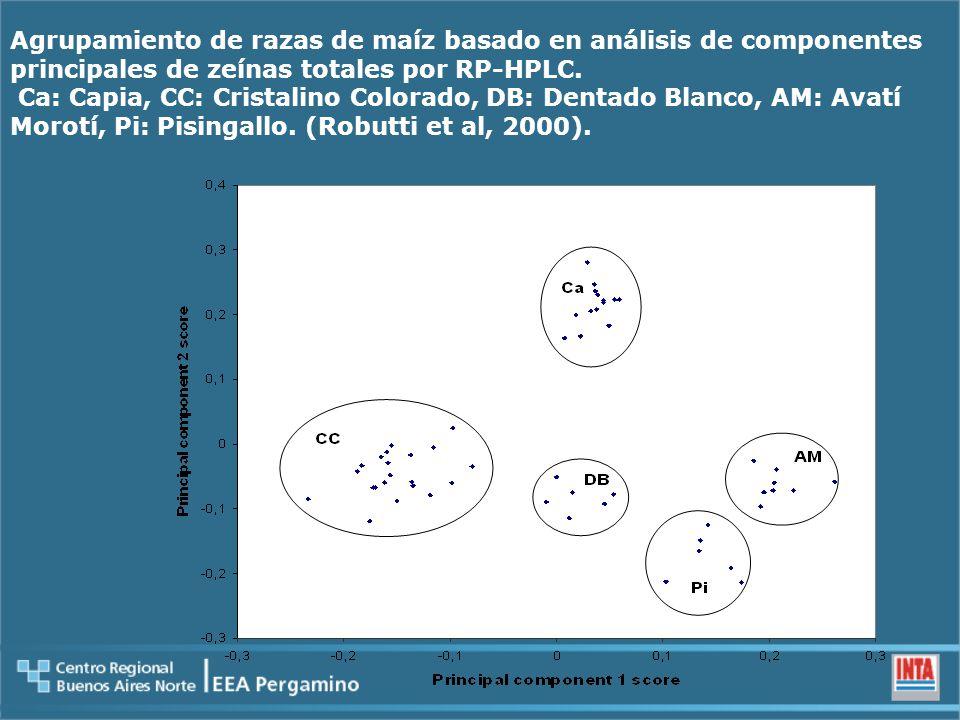 Agrupamiento de razas de maíz basado en análisis de componentes principales de zeínas totales por RP-HPLC.