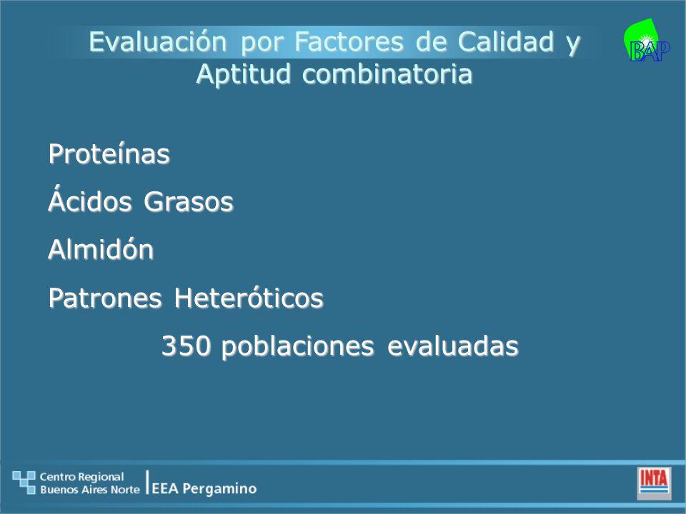 Evaluación por Factores de Calidad y Aptitud combinatoria Proteínas Ácidos Grasos Almidón Patrones Heteróticos 350 poblaciones evaluadas 350 poblaciones evaluadas