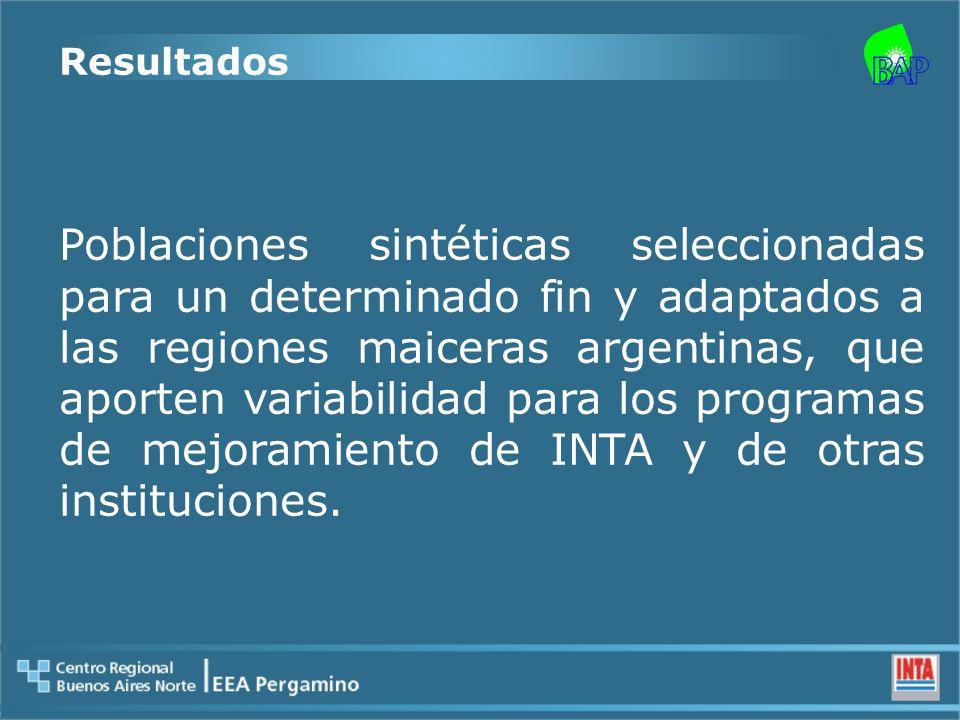 Resultados Poblaciones sintéticas seleccionadas para un determinado fin y adaptados a las regiones maiceras argentinas, que aporten variabilidad para los programas de mejoramiento de INTA y de otras instituciones.