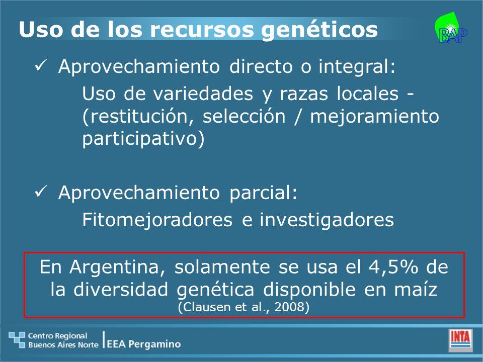 Uso de los recursos genéticos Aprovechamiento directo o integral: Uso de variedades y razas locales - (restitución, selección / mejoramiento participativo) Aprovechamiento parcial: Fitomejoradores e investigadores En Argentina, solamente se usa el 4,5% de la diversidad genética disponible en maíz (Clausen et al., 2008)