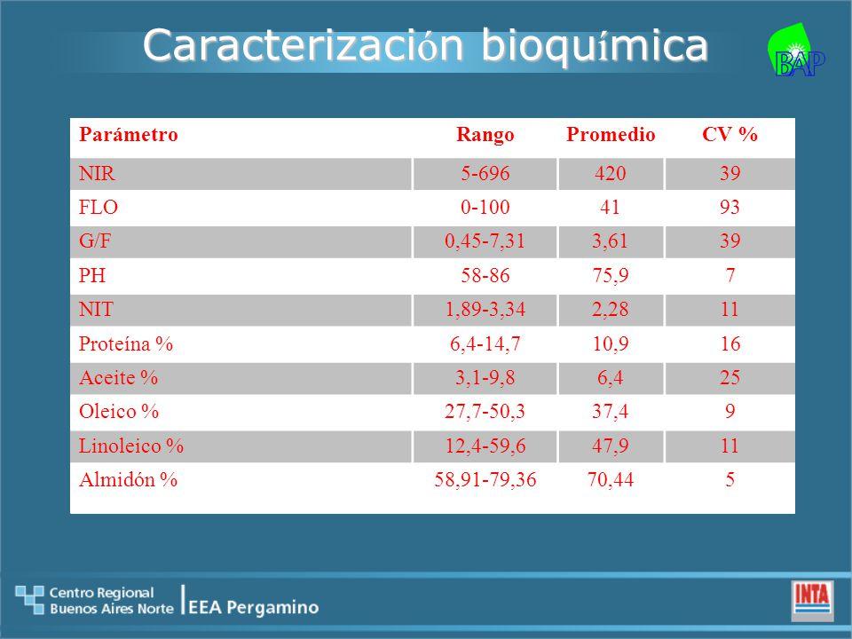 Caracterizaci ó n bioqu í mica ParámetroRangoPromedioCV % NIR5-69642039 FLO0-1004193 G/F0,45-7,313,6139 PH58-8675,97 NIT1,89-3,342,2811 Proteína %6,4-14,710,916 Aceite %3,1-9,86,425 Oleico %27,7-50,337,49 Linoleico %12,4-59,647,911 Almidón %58,91-79,3670,445