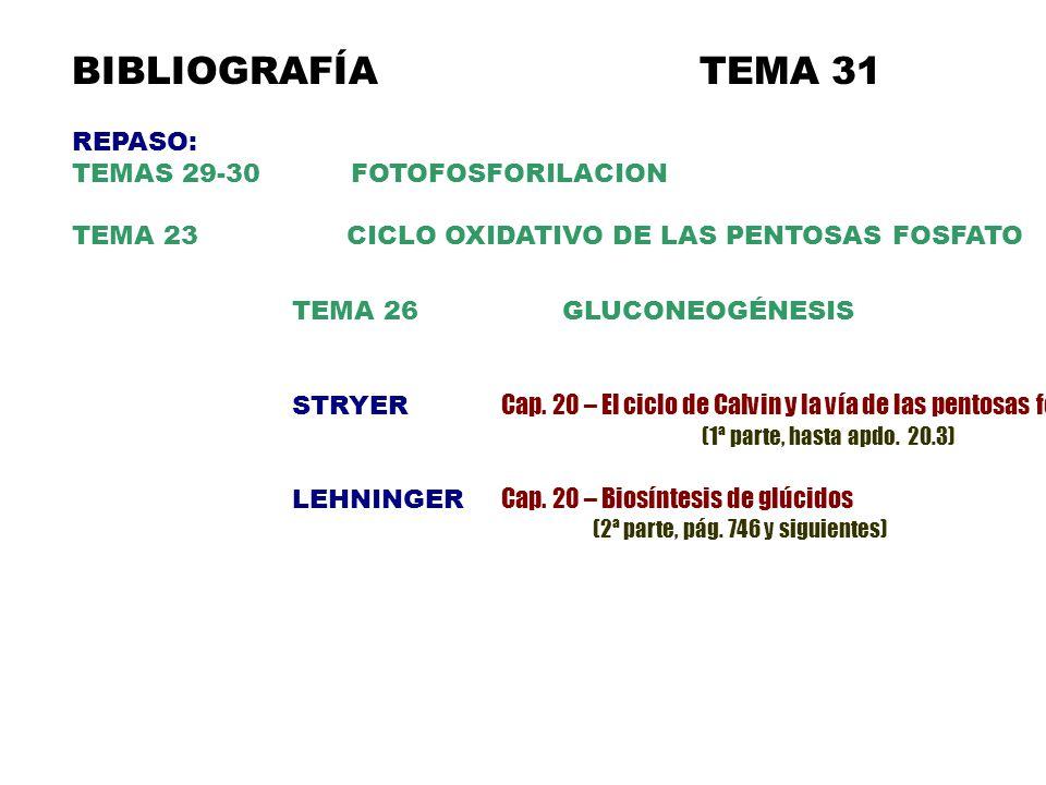 BIBLIOGRAFÍATEMA 31 REPASO: TEMAS 29-30 FOTOFOSFORILACION TEMA 23 CICLO OXIDATIVO DE LAS PENTOSAS FOSFATO TEMA 26 GLUCONEOGÉNESIS STRYER Cap.