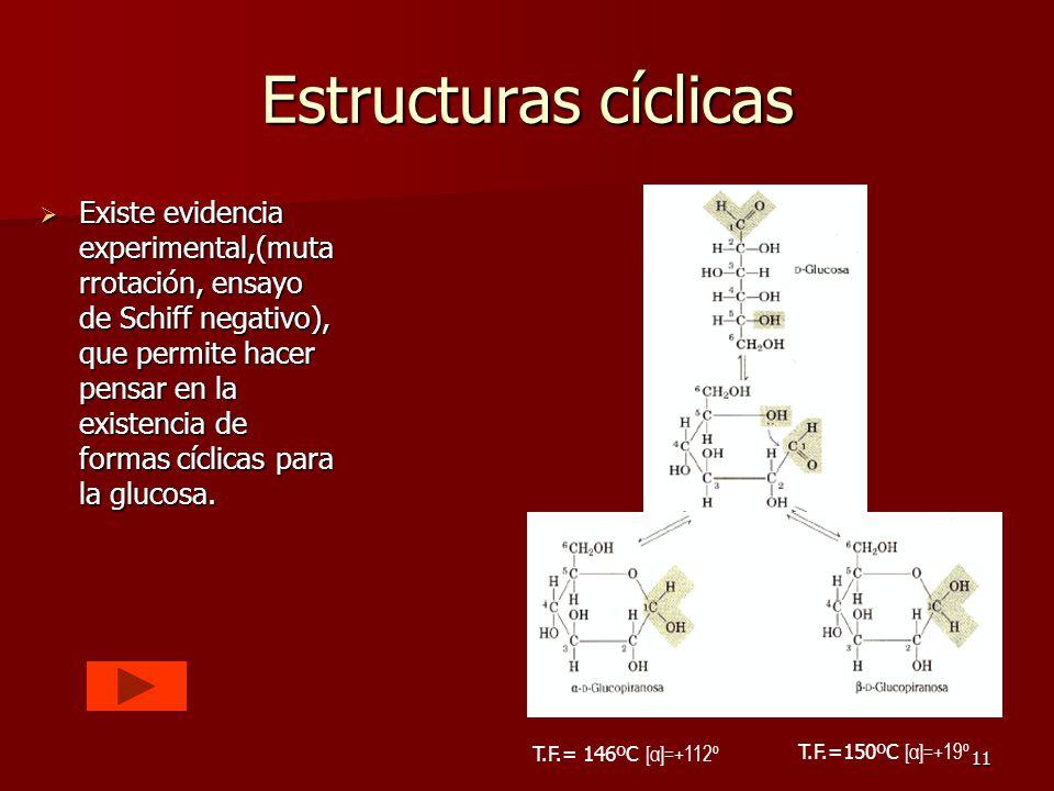 11 Estructuras cíclicas EEEExiste evidencia experimental,(muta rrotación, ensayo de Schiff negativo), que permite hacer pensar en la existencia de formas cíclicas para la glucosa.
