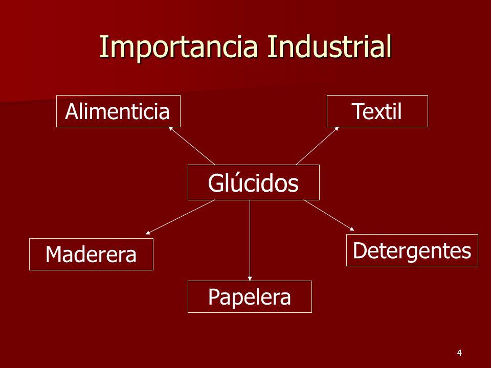 4 Importancia Industrial Glúcidos AlimenticiaTextil Maderera Papelera Detergentes
