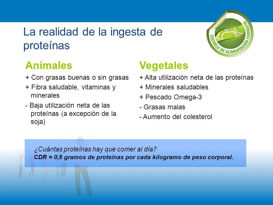 La realidad de la ingesta de proteínas Vegetales + Alta utilización neta de las proteínas + Minerales saludables + Pescado Omega-3 - Grasas malas - Au